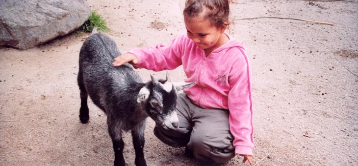 Semper sponsrar Skansen – fokus på Barnens allsång